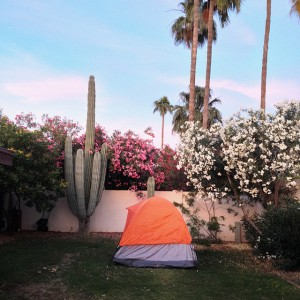 backyard-camping-arizona