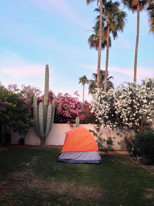 Backyard camping in May  Things to Do in Phoenix With Kids