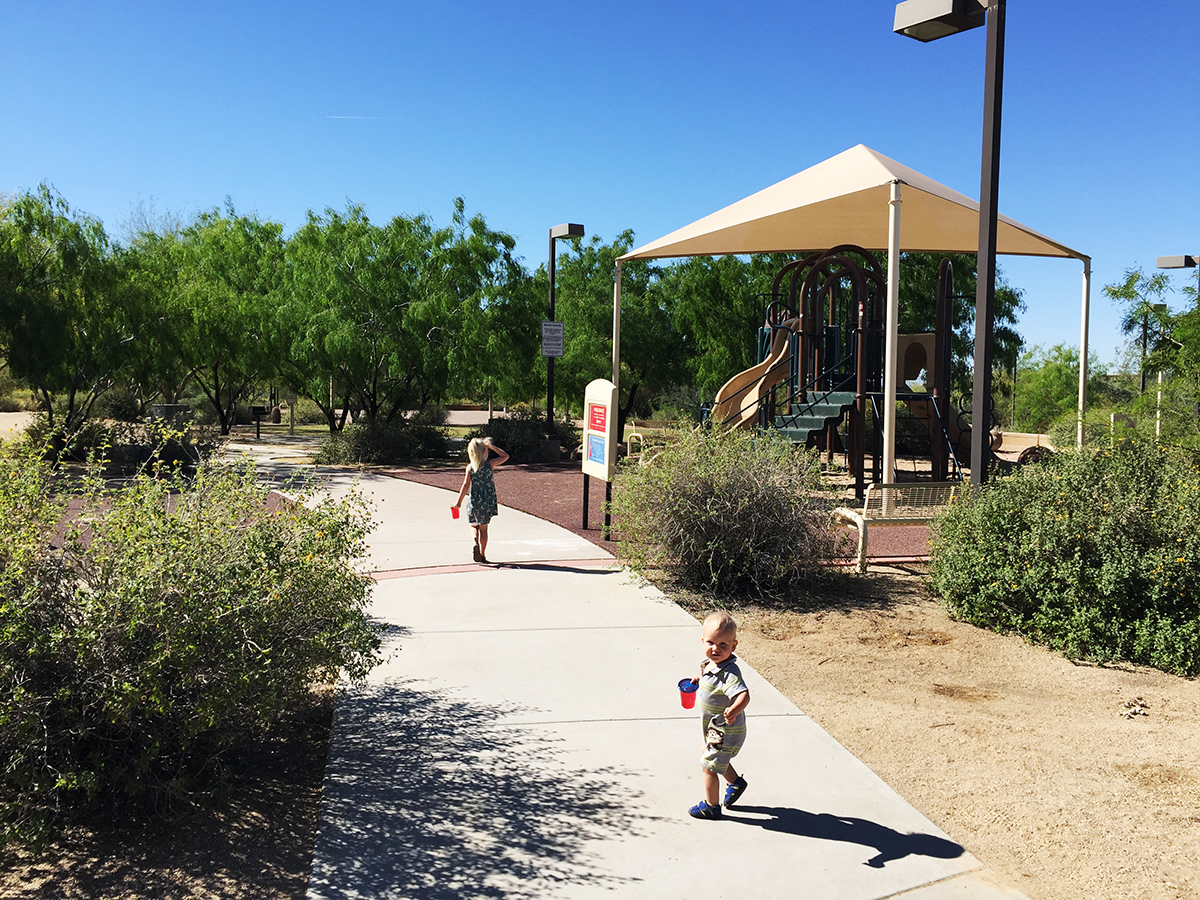 Florence-Ely-Nelson-Desert-Park-in-Scottsdale-Arizona