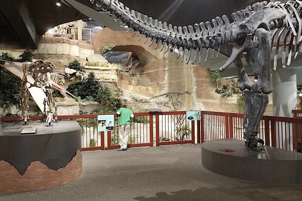 arizona museum of natural history free admission 2019